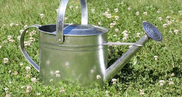 coltivare-poca-acqua